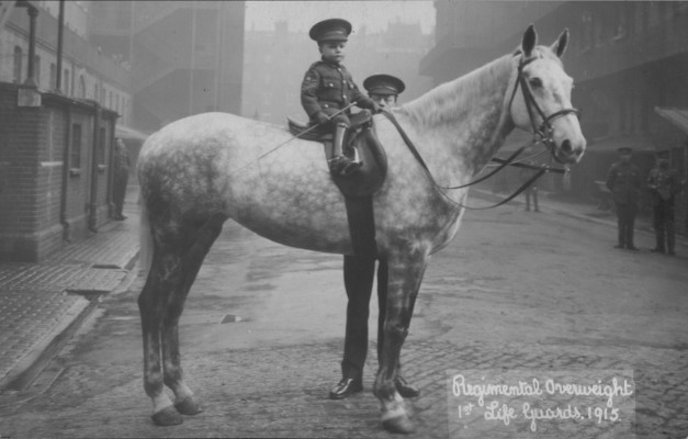 Regimental Overweight | Household Cavalry Archive